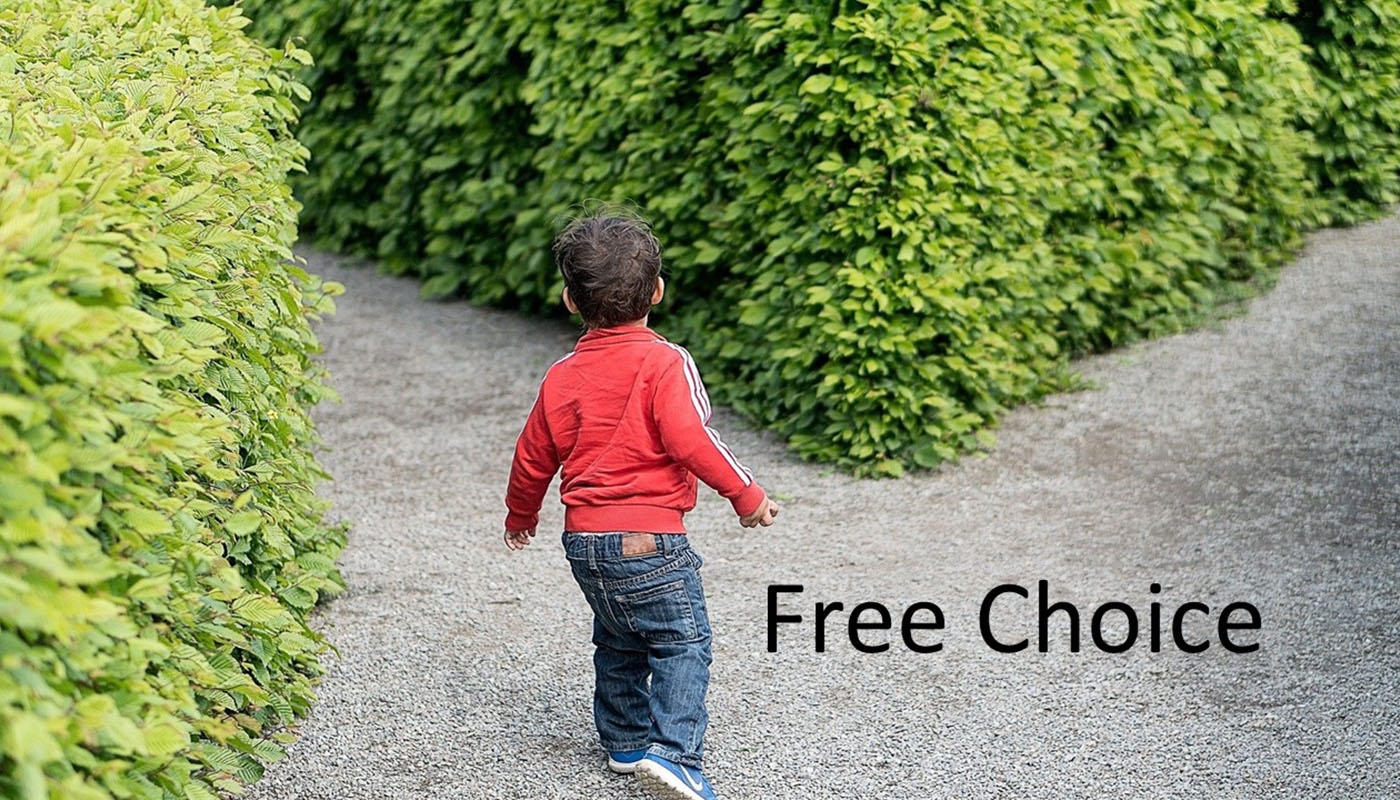 Free Choice Image