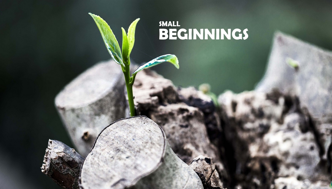 Small Beginnings Image